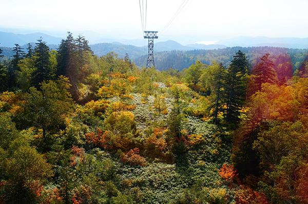 北海道楓景,旭岳風景。聯盟行銷大師班擴大你的視野與格局。