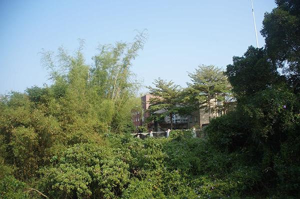 美麗的台南藝術大學