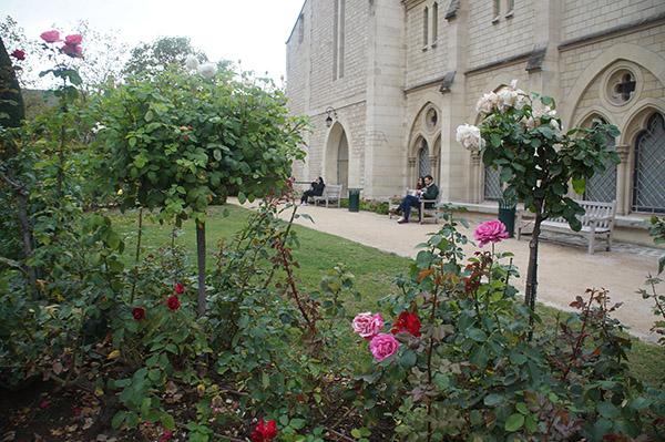羅丹美術館內的玫瑰花,五顏六色非常美麗