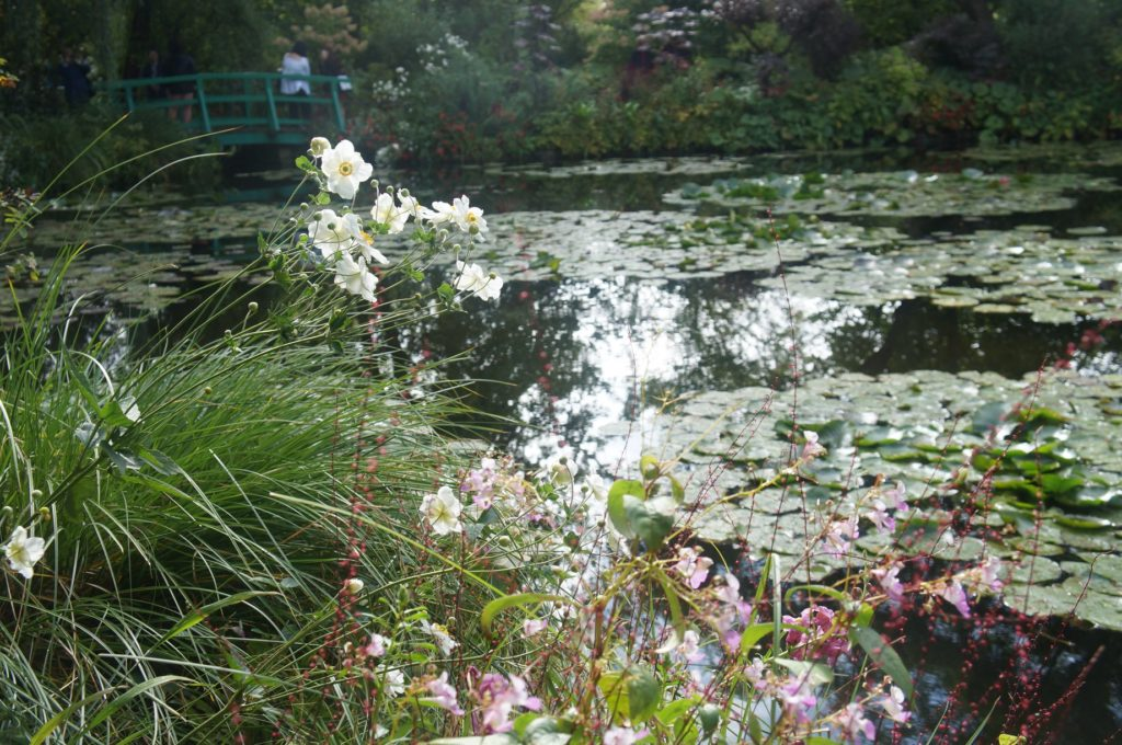 莫內花園 睡蓮池