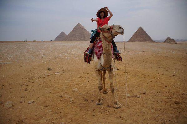 沒有購買網卡的埃及12天之旅!
