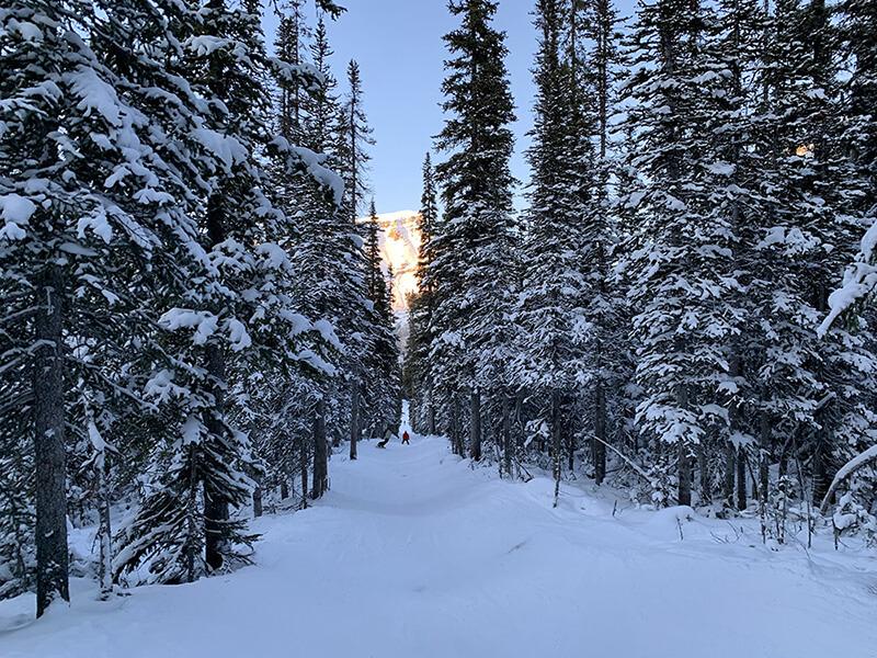 卡加利滑雪課程經驗分享,山在呼喚我!