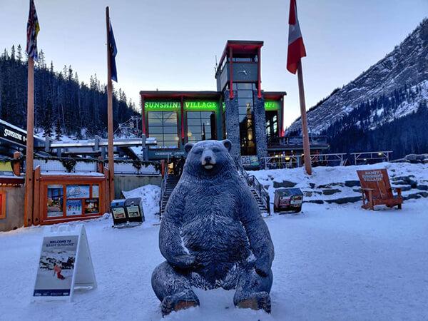 sunshine village雪場,陽光村雪場門口的大熊!