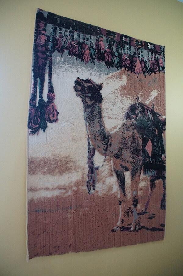 大學牆上的駱駝掛畫,我很喜歡!