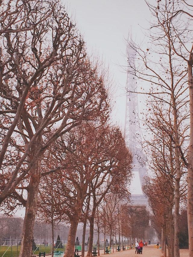 蕭瑟的巴黎鐵塔