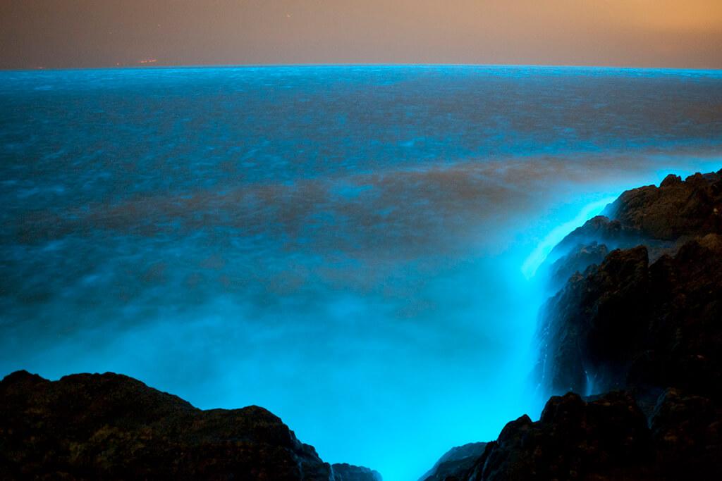 美麗夢幻的馬祖藍眼淚