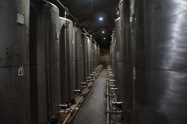 真正釀造的大鐵桶!在裡面的房間,內部都是陳年的酵母。