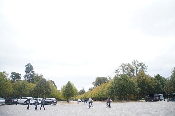 到處都是樹,看不到小特里亞農宮。