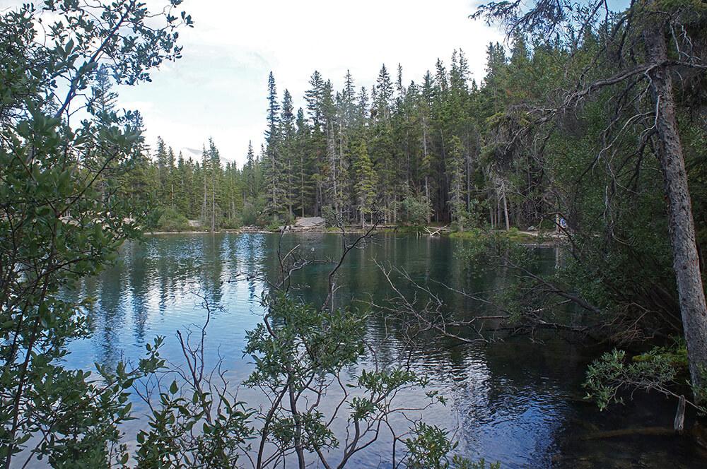 換個角度欣賞Grassi Lake。