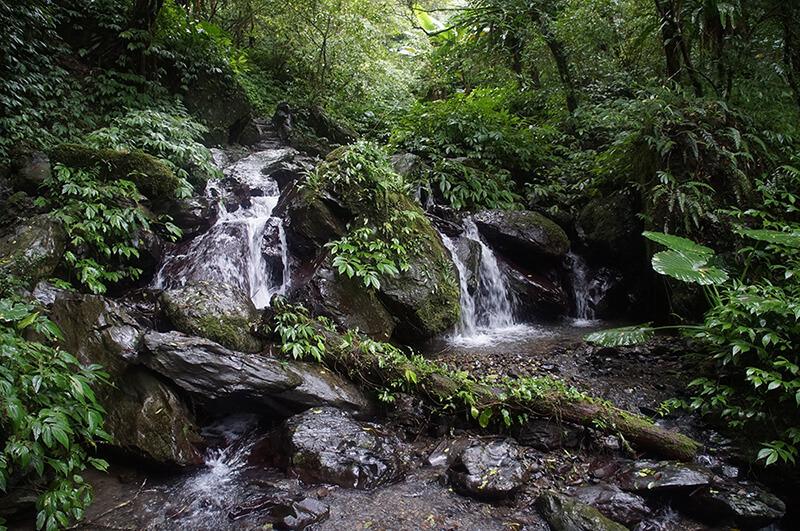 抹茶山通天橋後美麗的瀑布景緻。