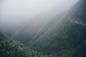 宜蘭抹茶山