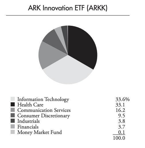 2020年中的ARKK持股產業類別。