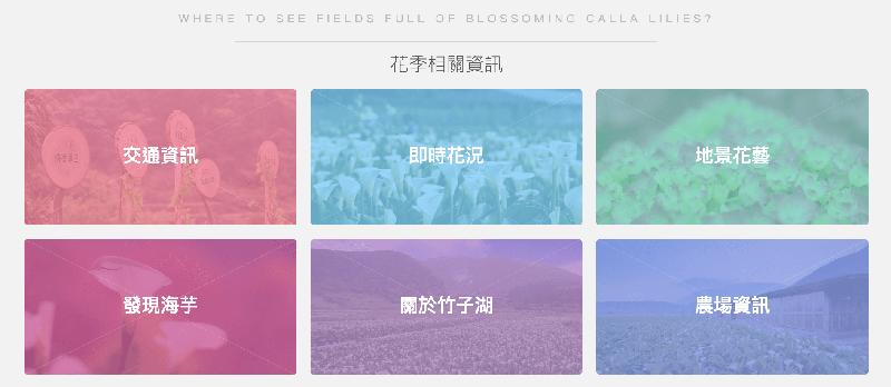 竹子湖海芋季活動詳情與即時花況都在官網上