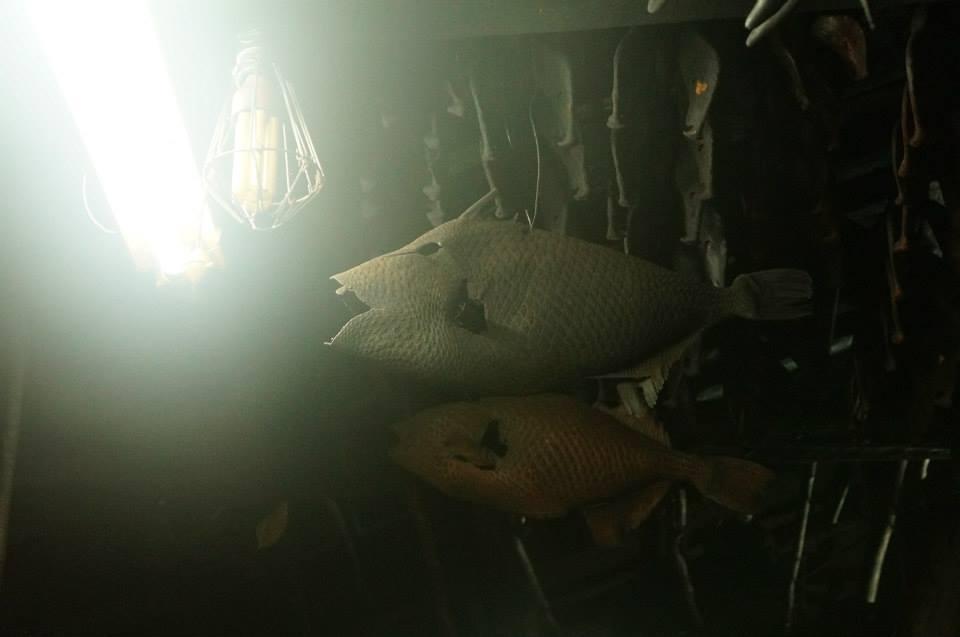 地下屋內掛置曬乾的魚皮,非常可愛。
