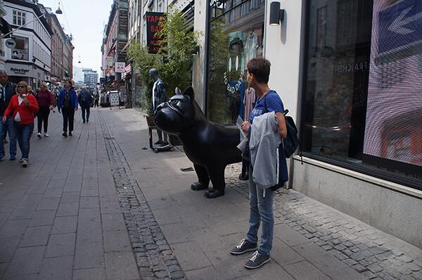 丹麥街景,大黑狗狗!